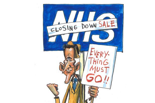 MAIN-Maguire-cartoon-NHS-sale