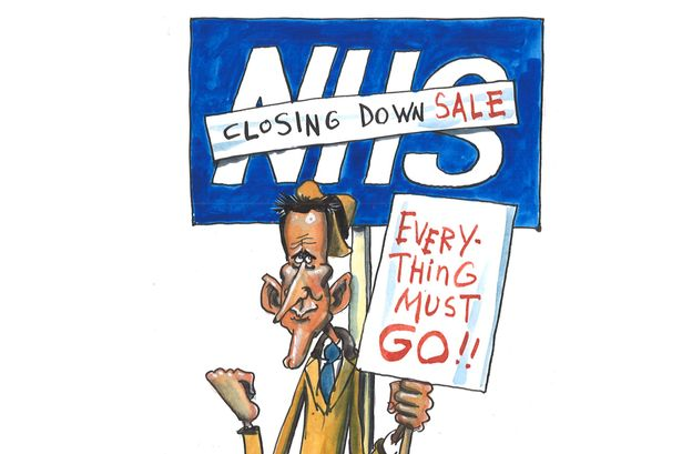 MAIN-Maguire-cartoon-NHS-sale